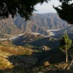 gebied bergamotte